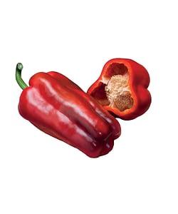 Pimiento Lamuyo Rojo