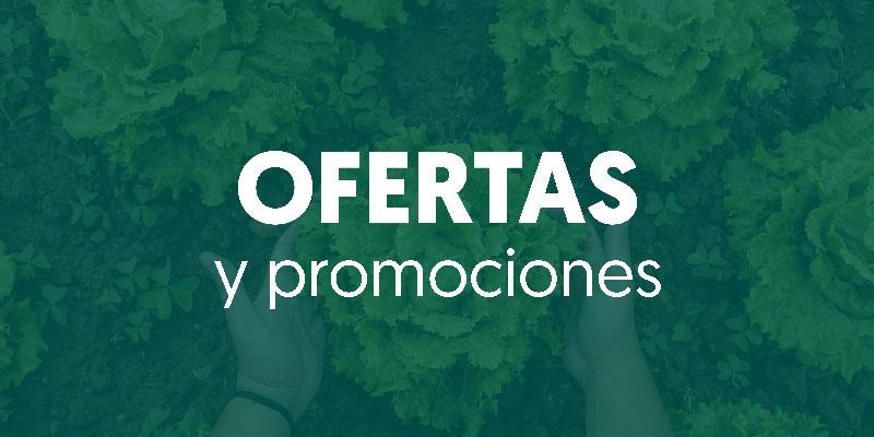 Ofertas y promociones activas