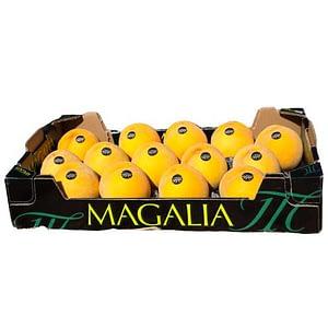 Melocotón Amarillo AAA